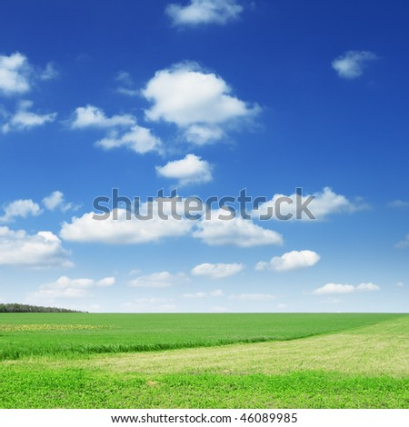 green field and  blue sky, - stock photo