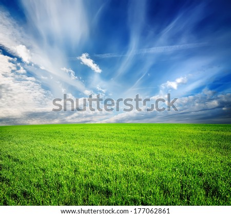 Green field and blue sky lit by the sun - stock photo