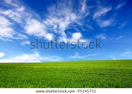 Green field and blue sky-nature background - stock photo