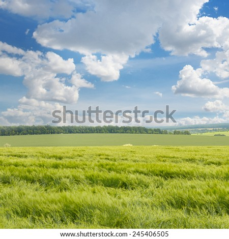 green field and blue sky with clouds - stock photo