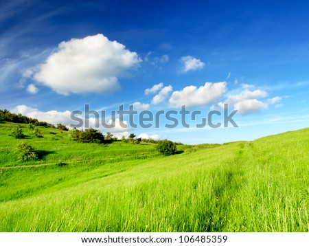 Green field and blue sky with clouds. Bright summer landscape - stock photo