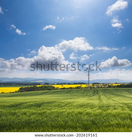 Green field and blue sky with electricity pylon and oilseed rape field in the background - stock photo