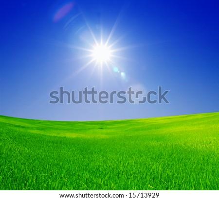 green field and bright sun - stock photo