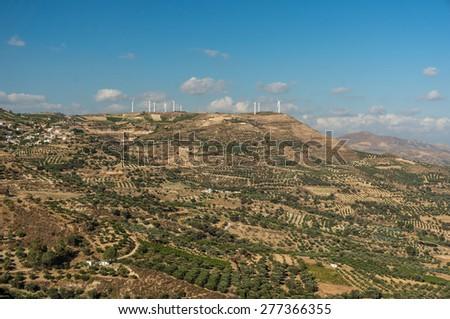 green field and clean energy, beautiful green tea plantation and Wind turbine - stock photo