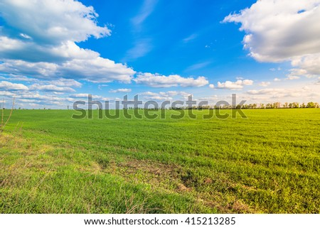 green field and deep blue sky