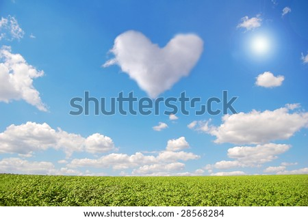 Green field and fly heart
