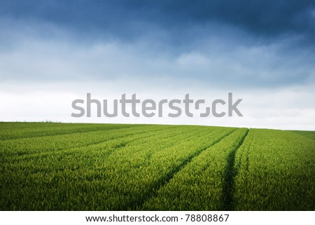 Green field and overcast skies - stock photo