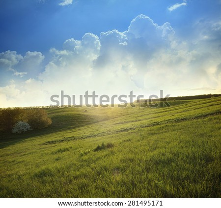 Green field and sky with light clouds - stock photo