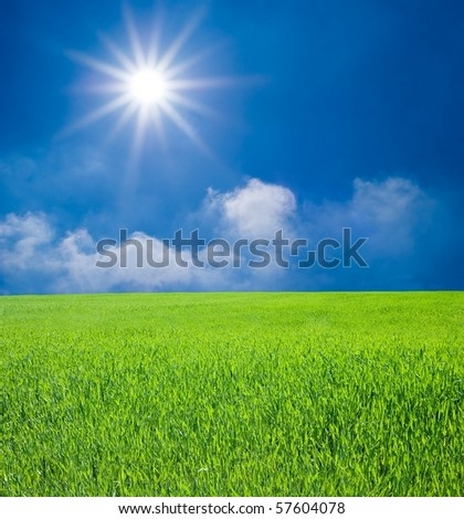 green field and sparkle sun - stock photo