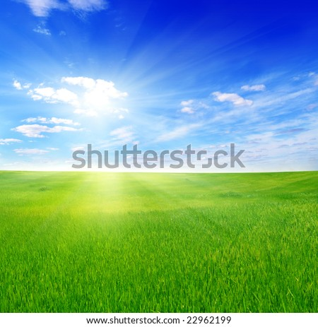green field and sun sky - stock photo