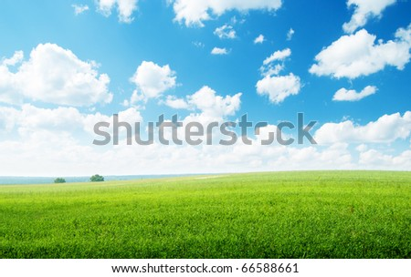 green field and sunny day - stock photo