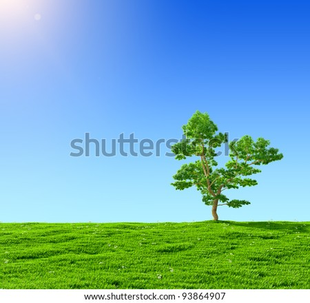 green field and  tree on a background of the blue sky - stock photo