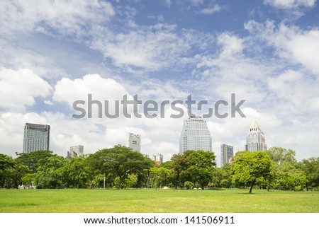 Green field and tree with blue sky in city park - stock photo