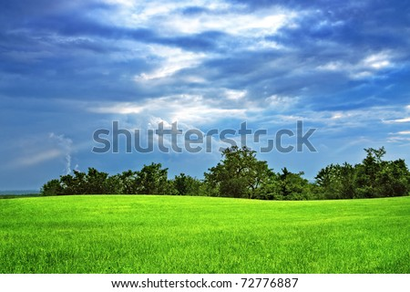 Green field and trees - stock photo
