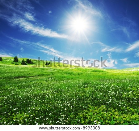 Green field and white clouds - stock photo