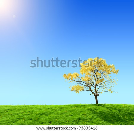green field and yellow tree on a background of the blue sky - stock photo