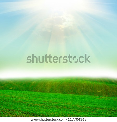 Green field at the sunset - stock photo