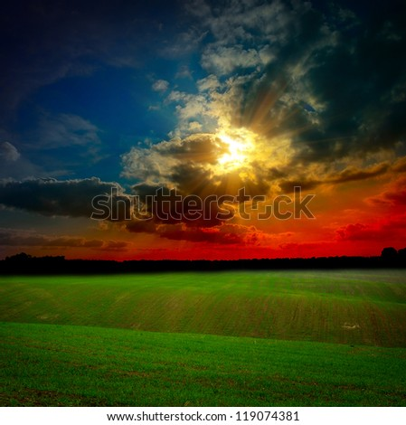 Green field at the sunset