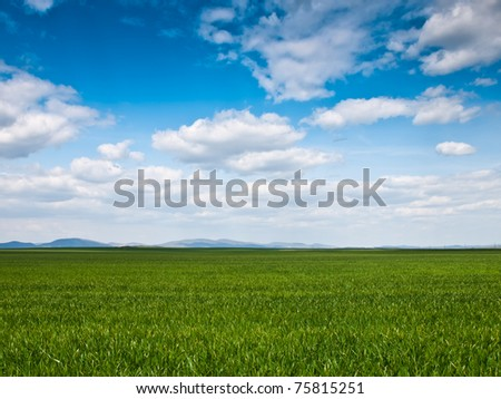 green field background - stock photo