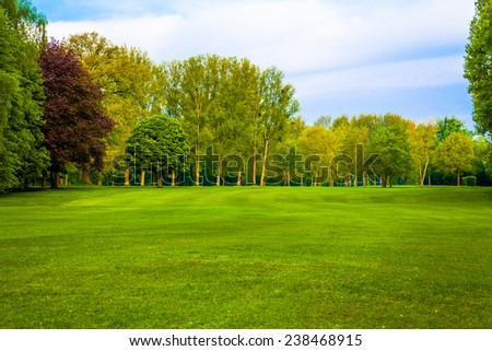 green field. Beautiful Landscape. grass and forest - stock photo