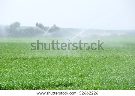 Green field being watered by automatic sprinkler system - stock photo