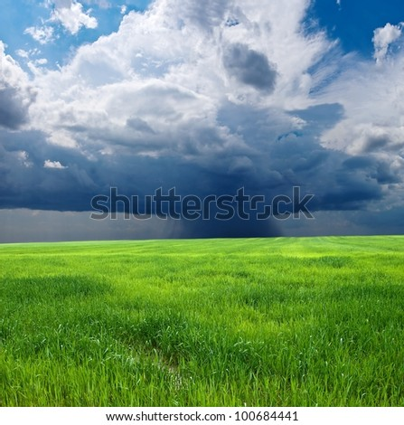 green field by a shower