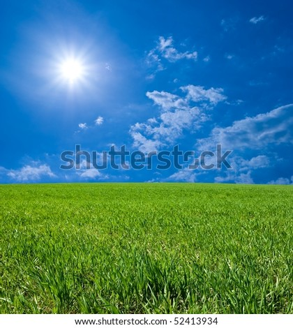 green field by a summer day - stock photo