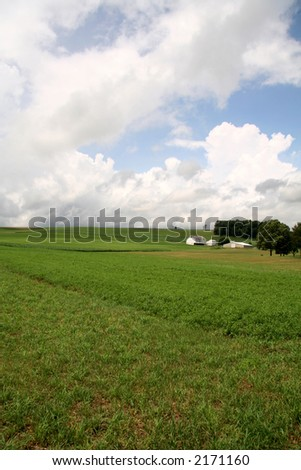 Green Field Farmland with Barn and House - stock photo