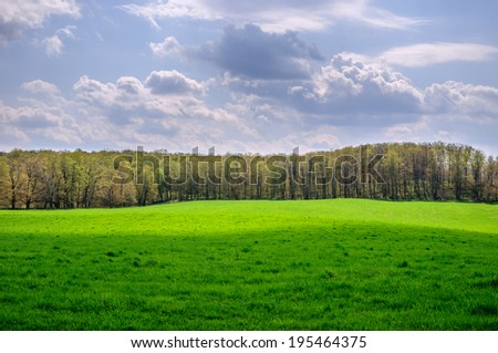Green field, forest and cloudy sky