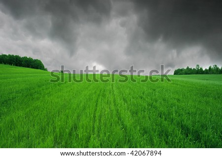 Green field,forest and cloudy sky.