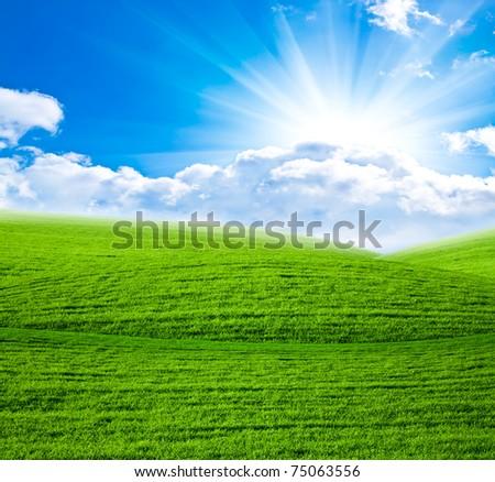 Green field in sun beams - stock photo