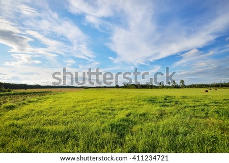Green field in the countryside area - stock photo