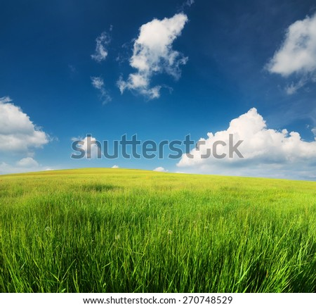 Green field in the mountain valley. Beautiful summer landscape - stock photo