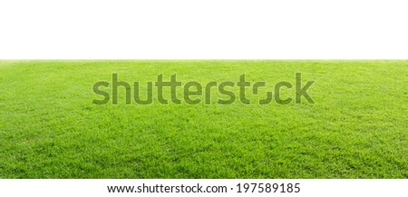 Green field  isolated - stock photo