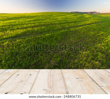 green field landscape with wooden floor planks on foreground - stock photo