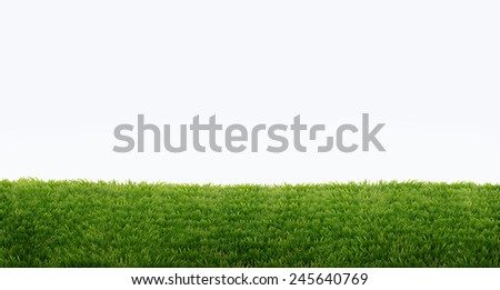 green field of fresh grass isolated on white. natural easter background - stock photo