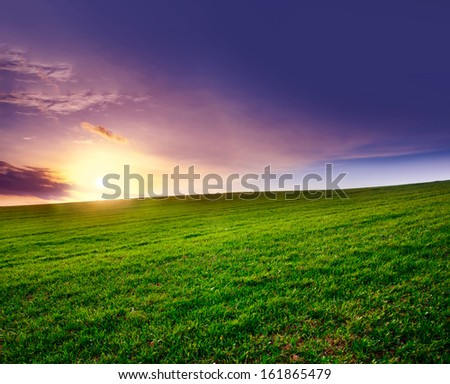 green field on springtime. sunset landscape - stock photo