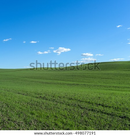 Green field on the hill under a clear blue sky