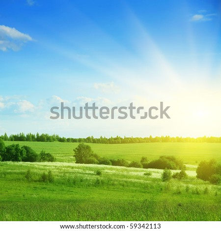 Green field,trees,blue sky and sun. - stock photo