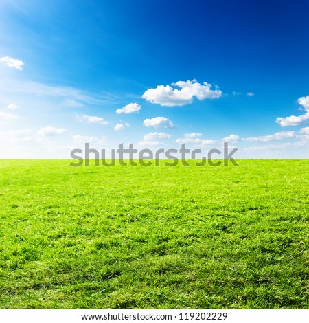 Green field under blue clouds sky. Beauty nature background - stock photo