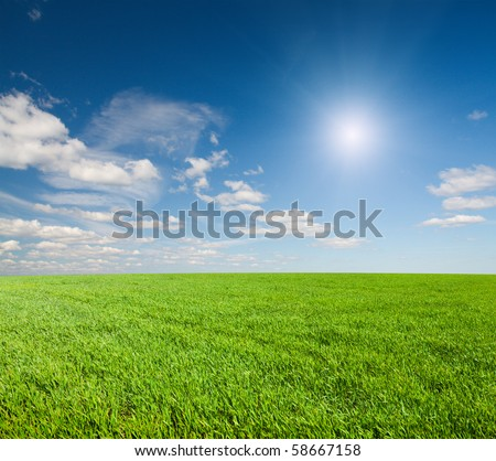 Green field under blue cloudy sky whit sun - stock photo
