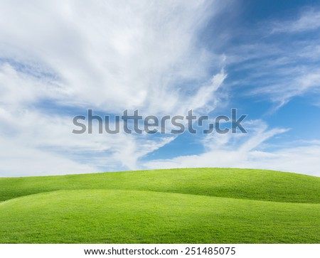 Green field under blue sky - stock photo