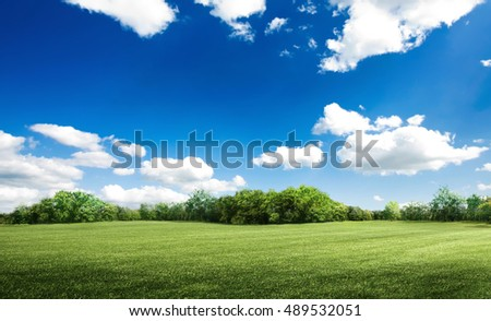 Green field under blue sky. Beauty nature background