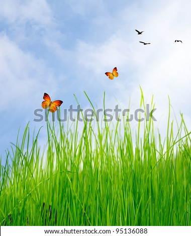 Green field under blue sky with clouds and butterfly - stock photo