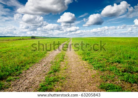Green field under midday sun. Rural road. - stock photo