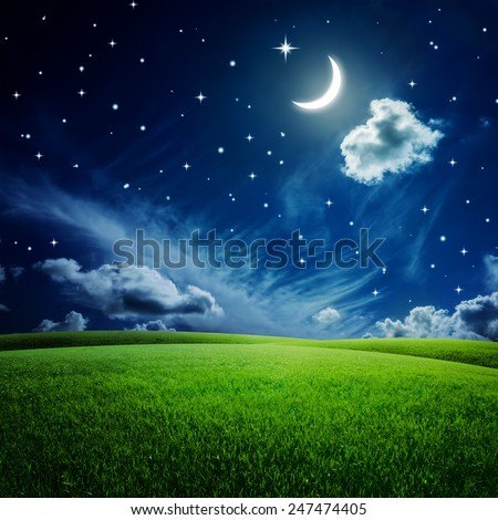 Green field under night sky with moon and stars. Beauty nature background - stock photo