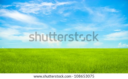 green field with blue sky - stock photo