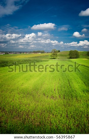 Green field with blue sky above