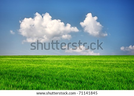 Green field with blue sky, nature background - stock photo