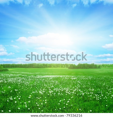 Green field with dandelions and sunbeams in blue sky.